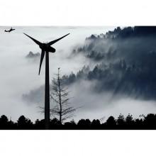 Curso de Gestión medioambiental en empresas de construcción a distancia con prácticas