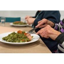 Curso de Administracion de alimentos y tratamientos a personas dependientes en el domicilio a distancia