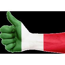 Curso de Italiano A1 (incluye audio) a distancia
