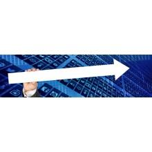 Curso de Administración del gestor de datos en sistemas ERP-CRM con créditos universitarios
