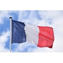 Curso de Francés A2 con créditos universitarios