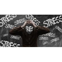 Curso de El síndrome de burnout con créditos universitarios