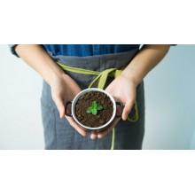 Curso de Aprovechamiento de recursos y manejo de suelo ecológico a distancia
