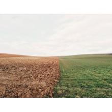 Curso de Infraestructuras para establecer la implantación de cultivos a distancia