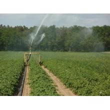 Curso de Operaciones auxiliares de riego en cultivos agrícolas a distancia