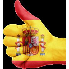 Curso de Español para extranjeros - nivel básico - A1-A2 a distancia