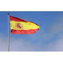 Curso de Español para extranjeros a distancia