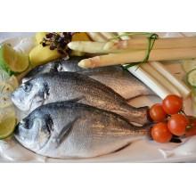 Curso de Elaboración de masas, pastas, precocinados y cocinados de pescado a distancia
