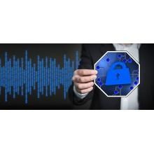 Curso de Gestión de la seguridad informática en la empresa a distancia