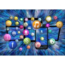 Curso de Desarrollo de aplicaciones web distribuidas a distancia