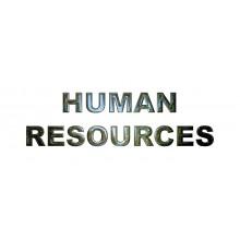 Curso de Dirección de Recursos Humanos a distancia con prácticas