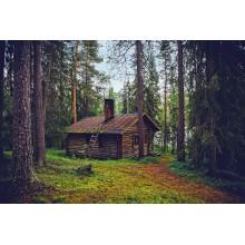 Curso de Servicio de restauración en alojamientos rurales ubicados en entornos rurales y/o naturales con prácticas