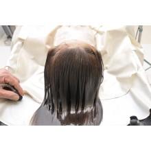 Curso de Análisis del cuero cabelludo y cabello, protocolos de trabajos a distancia con prácticas