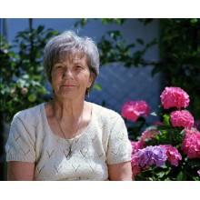 Curso de Guía básica de intervenciones en geriatría a distancia con prácticas