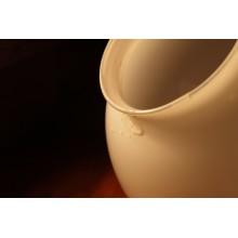 Curso de Identificación de defectos y no conformidades en pastas cerámicas para certificado