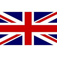 Curso de Inglés profesional para logística y transporte internacional para certificado