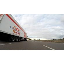 Curso de MF1461_2 - Mantenimiento de primer nivel de vehículos de transporte por carretera para certificado