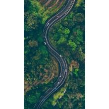 Curso de Análisis de los sistemas complementarios en carreteras y vias urbanas para certificado
