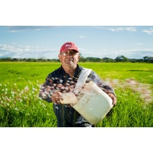 Curso de Manejo y mantenimiento de equipos de siembra y plantación para certificado